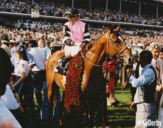 Triple Crown Winner Affirmed at his victory Kentucky Derby  1978