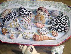 Bold Shells on a Platter ~ artist Kaffe Fassett #art #painting