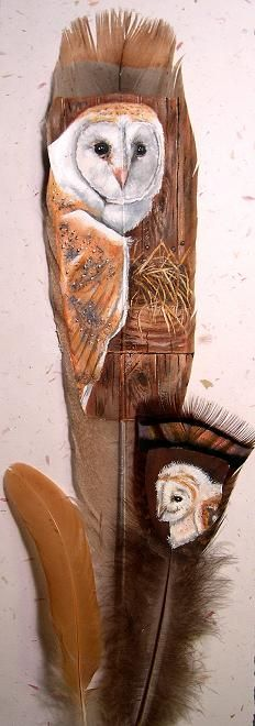 Barn Owl by Gail Savage