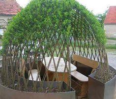 Willow trees - forced to grow as we want = wind shelter for fire place Dream Garden, Garden Art, Garden Design, Garden Igloo, California Decor, Garden Structures, Outdoor Art, Garden Planning, Garden Projects
