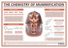Mummies are, perhaps, the easiest go-to costume for Halloween: grab some bandages, drape yourself in them, and job done. However, there's a little more behind the traditional embalming proces…