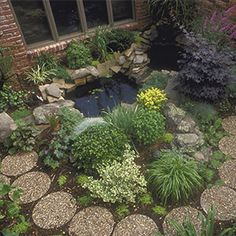 How to Make a Rain Garden: Harness the rain and put it to good use in your garden....I live in CA. I don't know  how much harnessing I can do but those of you who who get lots of rain, try this and let me know how it worked!