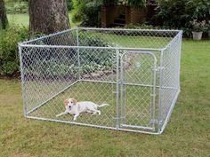 PetSafe Do It Yourself Dog Kennel       Check this out>>>>>>>   http://amzn.to/2bc3hsO