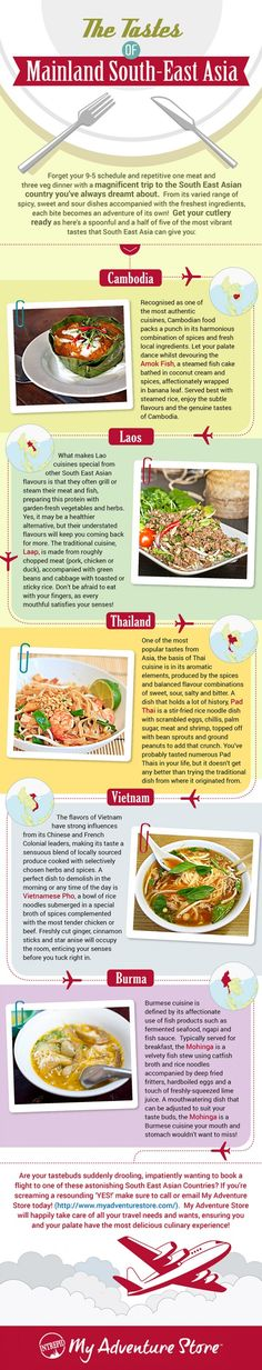 Infographic: The Tastes of Mainland South East Asia