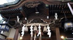 Let's visit around Seven Gods of Good Fortune, Shichi-fukujin for future prosperity! - Japan Tourism [Oshiete! goo]