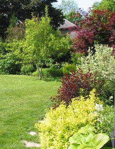 My garden in Paris, Ontario.