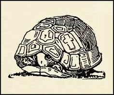 """""""The Turtle's Wish"""" by Dugald Stewart Walker by Plum leaves, via Flickr"""
