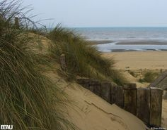 UTAH BEACH, FRANCE. Took a similar photo of this beach. My dad arrived in France in 1944 on this beach in the weeks after D-Day.