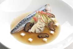 Mackerel is a rich, oily fish that stands up well to the pronounced Asian flavours in this dish.  Here the mackerel is served with ginger and spring onion spiced, shiitake and tofu gyoza and finished with fresh crisp apple and garnished with apple blossom.