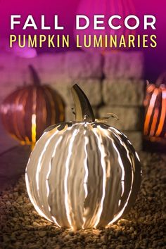 Fall fun for any setting!  Indoor and outdoor pumpkin, gourd and pine cone luminaries!  Art sparked by nature!
