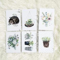 """3,290 Likes, 37 Comments - ViktoriaArtist (@vicky_od) on Instagram: """"Природный сет открыток и кот мяш-няш,который всем так понравился"""""""