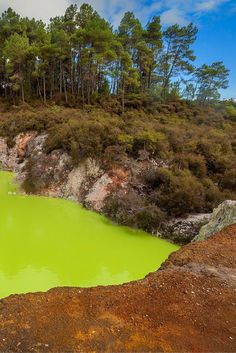 Crazy looking pool in Rotorua, New Zealand | The Planet D: Adventure Travel Blog:
