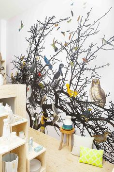 ZOO: behang 'vogels' in winkel / wallpaper 'birds' in shop
