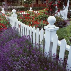 Front Yard Garden Design Front-Yard Gardens Make a Strong First Impression - Success lies in suiting the garden to your house style Picket Fence Garden, Garden Fencing, White Picket Fences, Garden Steps, Garden Path, Herb Garden, Vegetable Garden, Front Yard Fence, Front Yard Landscaping