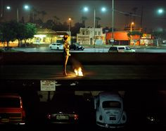 Photographs of the Immediate Future - but does it float image by Alex Prager