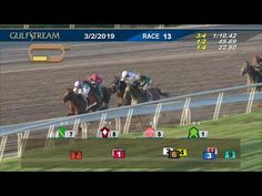 402 Best Horse Racing and Gambling images in 2019 | Documentaries