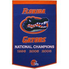 "Florida Gators 37""x 24"" Royal Blue Dynasty Felt Banner"