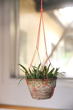 DIY Macrame Plant Hanger - DIY Craft Projects, Subscription Box | Whimseybox