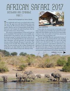 Read about Nancy Binder's African Safari in 3 years! African Safari, 3 Years, The Voice, Magazine, Adventure, Movie Posters, 3 Year Olds, Film Poster, Popcorn Posters