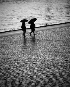 November Rain Photo: Dieter Krehbiel