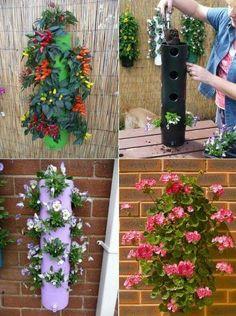 Blumen mal anders aufhängen