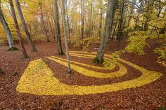Le Land Art ou « l'art dans la nature »