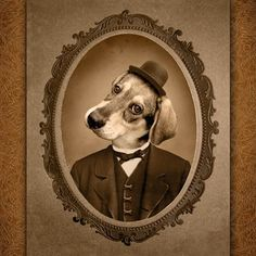 Cindy Jerrell's custom pet portraits