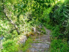 Boa tarde :D A beleza uxuriante dos velhos caminhos de pedras gastas por centenas de anos nas margend o rio Vez em <3 Arcos de <3