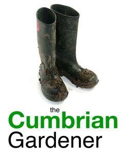 The Cumbrian Gardener