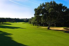 Hope to have a holiday home here one day  Valderrama Golf Club | Sotogrande | Spain. Number 1 course in Europe!