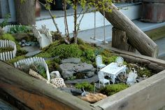 Fairy garden box with a tree swing! via Holly Ledingham --- I want to make a fairy garden! Mini Fairy Garden, Gnome Garden, Dream Garden, Garden Terrarium, Garden Plants, Garden Boxes, Miniature Fairy Gardens, Fairy Houses, Go Green