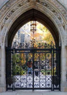 Inside Scoop: 12 Tips to Know About YALE University From A Student's Perspective  http://meetmycollege.com/Home/College/1446