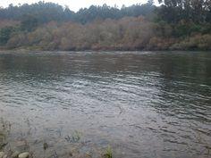 Condições actuais do Rio Minho