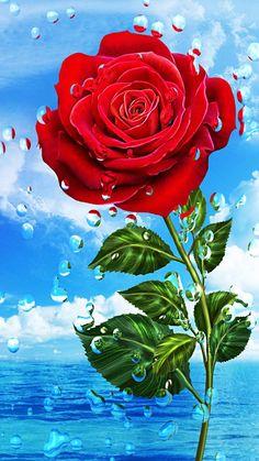rose wallpaper by georgekev - 04 - Free on ZEDGE™ Blue Roses Wallpaper, Wallpaper Nature Flowers, Beautiful Landscape Wallpaper, Beautiful Flowers Wallpapers, Beautiful Rose Flowers, Flower Phone Wallpaper, Butterfly Wallpaper, Scenery Wallpaper, Flower Backgrounds