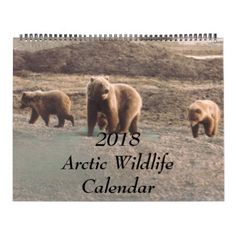 Classy 2018 Arctic Wildlife Alaska Photo Designed Calendar - white gifts elegant diy gift ideas