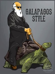 Galapagos Style