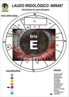 Blog de cursoiridologia : IRIDOLOGIA - CURSO DE IRIDOLOGIA A DISTÂNCIA, MODELO DO LAUDO IRIDOLÓGICO - ESCLERODIAGNOSE