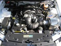 strut bar, cold air induction and custom Ford Racing tune. Ford Mustang Shelby Gt, The Struts, Engine, Racing, Cold, Bar, Running, Motor Engine, Auto Racing
