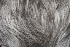 """""""epidermal oxidative stress"""" = gray hair? reversing gray without dyes? maybe a better solution is soon to come! 