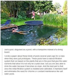 Having a pool sounds awesome especially if you are working with the best backyard pool landscaping ideas there is. How you design a proper backyard with a pool matters. Outdoor Spaces, Outdoor Living, Outdoor Decor, Outdoor Sheds, Outdoor Pool, Tiny Homes, New Homes, Houses Architecture, Interior Architecture