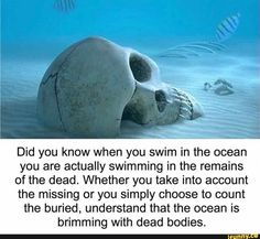 Did you know when you swim in the ocean you are actually swimming in the remains of the dead. Whether you take into account the missing or you simply choose to count the buried, understand that the ocean is brimming with dead bodies. Fun Facts Scary, Wierd Facts, Wow Facts, Intresting Facts, Funny Facts, Random Facts, Strange Facts, Random Stuff, Unusual Facts