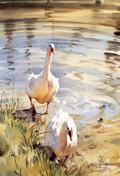 White geese Painting by Trevor Waugh - England =SPANISH =intura de Trevor Waugh - Inglaterra Watercolor Artists, Watercolor Animals, Watercolor Techniques, Watercolor Landscape, Watercolour Painting, Painting & Drawing, Landscape Paintings, Watercolors, Simple Watercolor