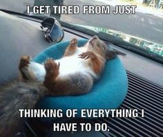 Tired...