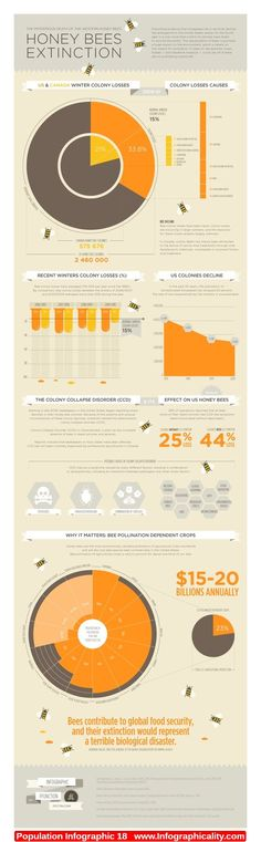 Population Infographic 18 - http://infographicality.com/population-infographic-18-2/