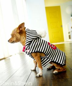 Download Mini Dog Sweater Sewing Pattern (FREE)                              …