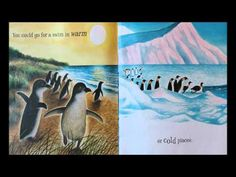 If You Were a Penguin - YouTube