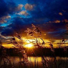 Golden Sunset||Photography by © Xipnos S ----------------------------------------------------------------- #goldensunset #sunset #sunsetlovers