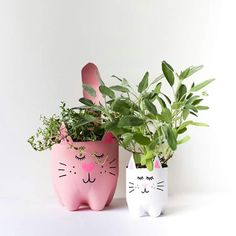 Soda bottle kitty planters