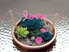 Feltro succulente Giardino / finta giardino / eco-pianta succulenta / feltro / wedding favor / decorazioni per la casa