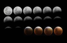 Best Pictures From The Super Blood Moon | Live and Learn